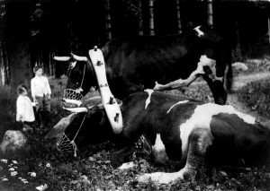 gertrude-kasebier-1852-1934-16
